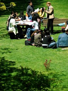 College students studying under the sun